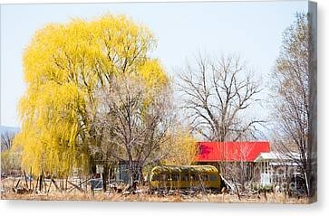 Landscape B10f Taos Nm Canvas Print by Otri Park