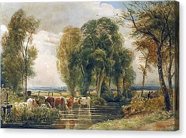 Landscape Cattle In A Stream With Sluice Gate Canvas Print by Peter de Wint