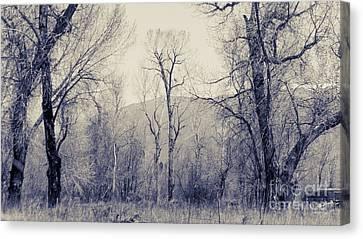 Landscape E10w Taos Nm Canvas Print by Otri Park