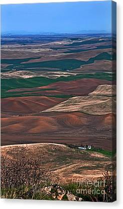 Landscape Of Rolling Farmland Steptoe Butte Washington Art Prints Canvas Print by Valerie Garner