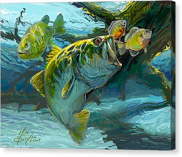 Large Mouth Bass And Blue Gills Canvas Print by Savlen Art