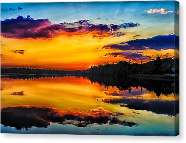 Last Daylight Canvas Print by Louis Dallara
