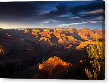 Last Light In The Grand Canyon Canvas Print by Andrew Soundarajan