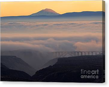 Last Light Over Mt. Adams Canvas Print by Mike Dawson