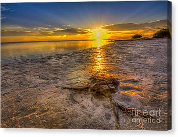 Last Light Over The Gulf Canvas Print by Marvin Spates