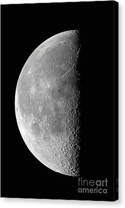 Last Quarter Waning Moon Canvas Print by Alan Dyer