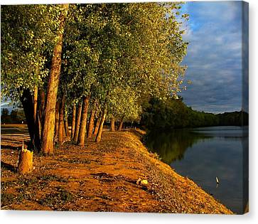 Late Evening On White River Canvas Print by Julie Dant