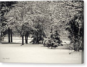 Late On A Cold Winter Day Canvas Print by Mary Machare