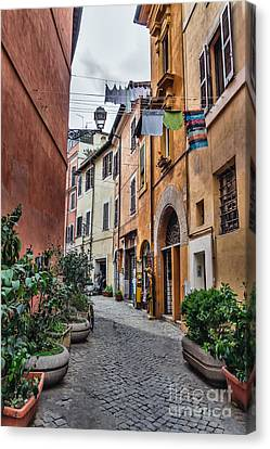 Laundry In Trastevere District Of Rome Canvas Print by Frank Bach