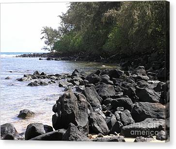 Lava Rocks Canvas Print by Mary Deal