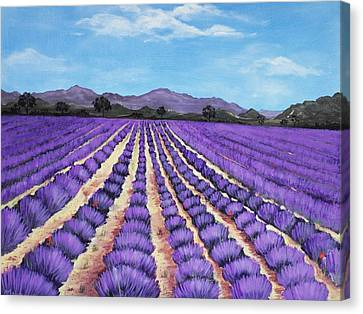 Lavender Field In Provence Canvas Print by Anastasiya Malakhova
