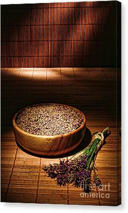 Lavender Flowers And Seeds Canvas Print by Olivier Le Queinec