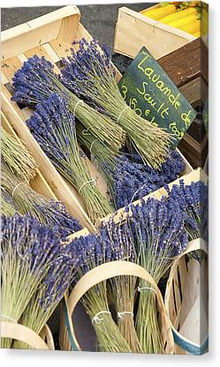 Lavender Of Provence Canvas Print by Karma Boyer