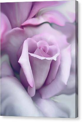 Lavender Rose Flower Portrait Canvas Print by Jennie Marie Schell