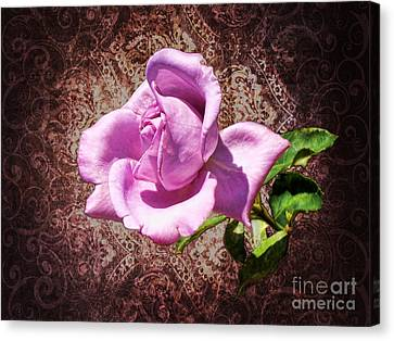 Lavender Rose Canvas Print by Mariola Bitner