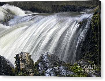Lazerne Falls Cascade Canvas Print by Darleen Stry