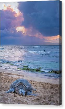 Lazy Days On Maui Canvas Print by Hawaii  Fine Art Photography