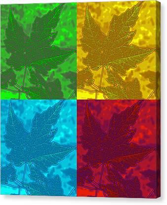 Leaf Pop Art Canvas Print by Barbara McDevitt