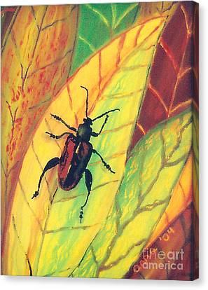 Leaf Surfer Canvas Print by Anna Skaradzinska