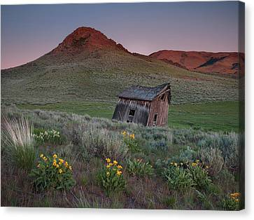 Leaning Shed Canvas Print by Leland D Howard