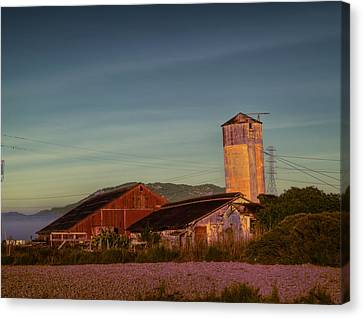 Leaning Silo  Canvas Print by Bill Gallagher