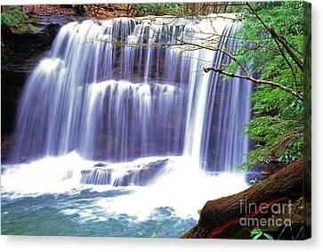 Leatherwood Falls Canvas Print by Thomas R Fletcher