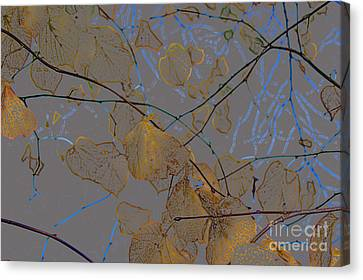 Leaves Canvas Print by Carol Lynch