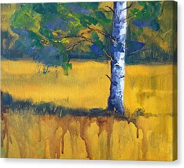Leaving A Shadow Canvas Print by Nancy Merkle