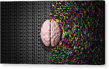 Left Brain Right Brain Canvas Print by Allan Swart