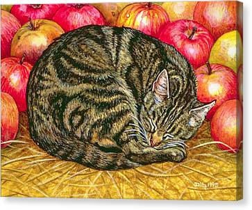 Left Hand Apple Cat Canvas Print by Ditz