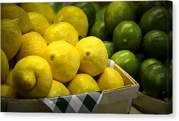 Lemons And Limes Canvas Print by Julie Palencia