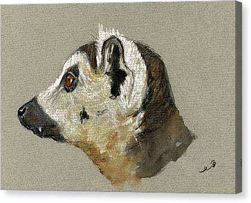 Lemur Head Study Canvas Print by Juan  Bosco