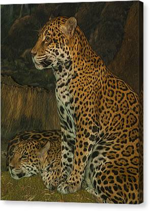 Leo And Friend Canvas Print by Jack Zulli