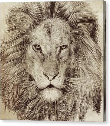 Leo Canvas Print by Eric Fan