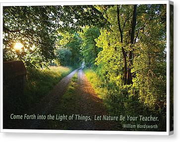 Let Nature Be Your Teacher Canvas Print by Shawn Shea