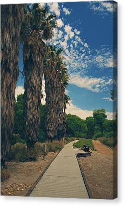 Let's Walk This Path Together Canvas Print by Laurie Search