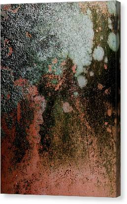 Lichen Abstract 2 Canvas Print by Denise Clark