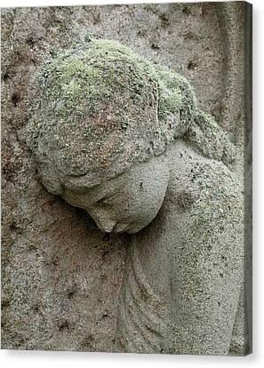 Lichen Growing On Gravestone Canvas Print by Cordelia Molloy