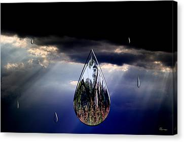 Life Drop Canvas Print by Andrea Lawrence