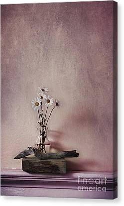 Life Gives You Daisies Canvas Print by Priska Wettstein