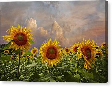 Life Is Good Canvas Print by Debra and Dave Vanderlaan