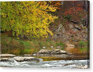 Life On The River Canvas Print by Bill Wakeley