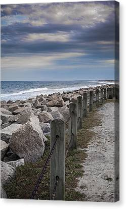 Life On The Rocks Canvas Print by Chris Brehmer Photography
