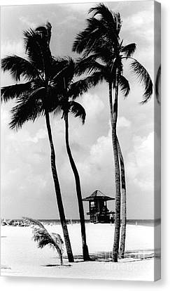 Lifeguard Hut Canvas Print by Gary Gingrich Galleries