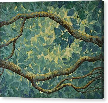 Light And Leaves Canvas Print by Vrindavan Das