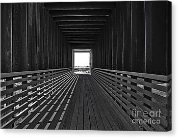 Light At The End Of The Tunnel Canvas Print by Lynne Sutherland