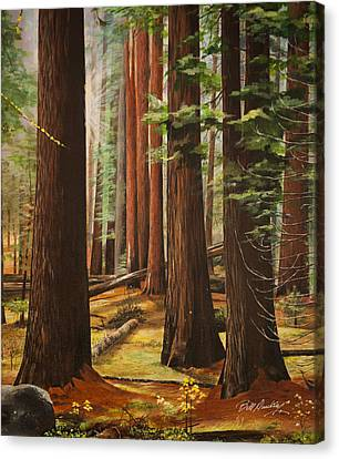 Light In The Forest Canvas Print by Bill Dunkley