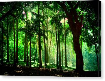 Light In The Jungles. Viridian Greens. Mauritius Canvas Print by Jenny Rainbow