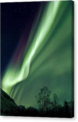 Light In The Sky Canvas Print by Dave Bowman