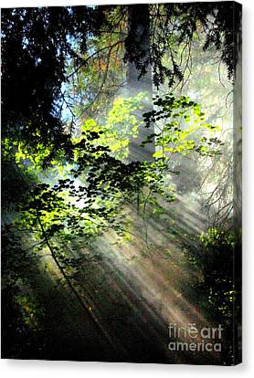 Light Rays Canvas Print by Shasta Eone